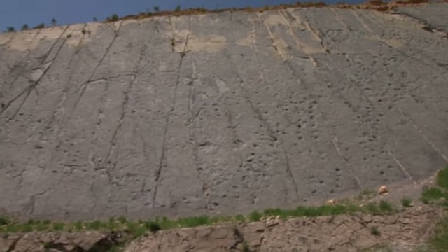 A cliff wall full of dinosaur footprints in Spain