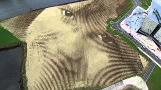 The Face From Space: WISH, an 11 acre portrait of a girl