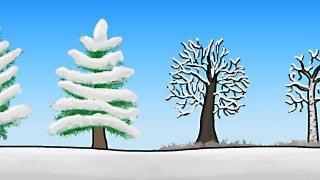 How do trees survive winter? –MinuteEarth
