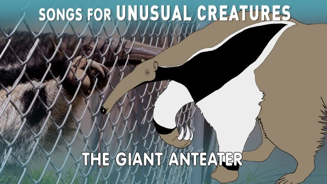The Giant Anteater – Songs for Unusual Creatures