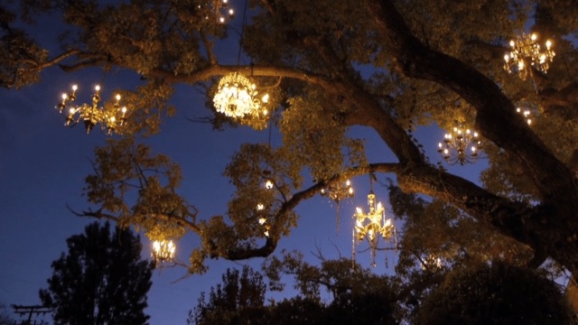 The Chandelier Tree – Silver Lake's twinkling neighborhood gem
