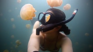 Lost in Jellyfish Lake, Eil Malk island, Palau