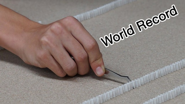 Most mini-dominoes toppled – Guinness World Record