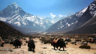 Trek the Himalayan mountains & hear stories from Khumbu, Nepal