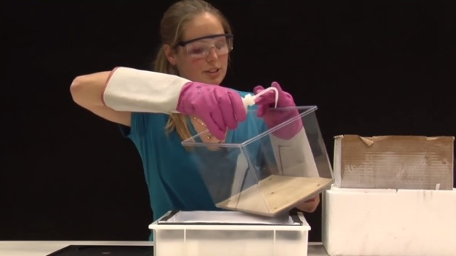 DIY Cloud Chamber –How to build your own particle detector
