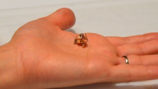 This mini origami robot self-folds, performs tasks, & can be dissolved