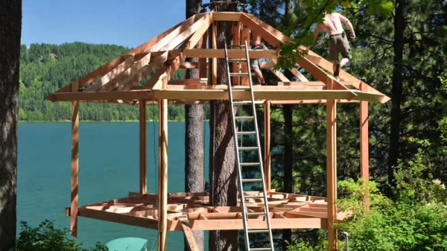 Building a hexagon-shaped treehouse, a time lapse