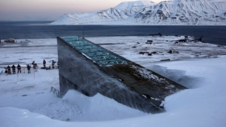 Look Inside The Doomsday Vault That Protects Seeds Of The World