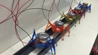 Stanford's µTug microrobots can pull a car