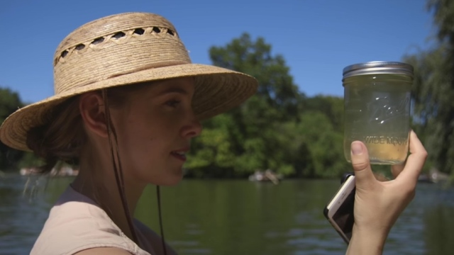 Hunting for microbes in Central Park's murkiest waters