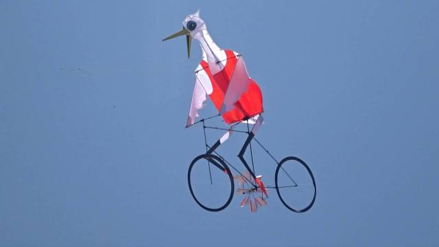 Bicycling egret kite