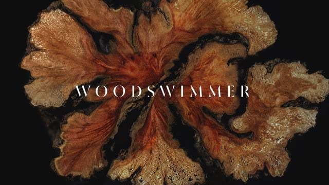 WoodSwimmer, a cross-sectional look at wood in stop motion