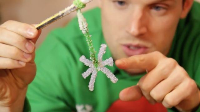 Salt crystal snowflakes, DIY candy canes, & more holiday science projects