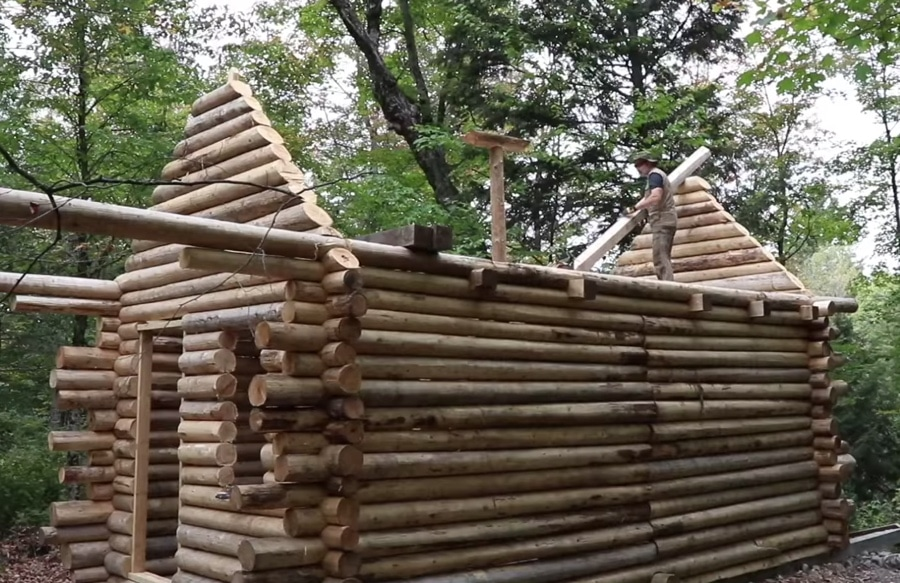 Charmant Log Cabin Time Lapse: A Canadian Man Builds A Shelter From Scratch | The  Kid Should See This
