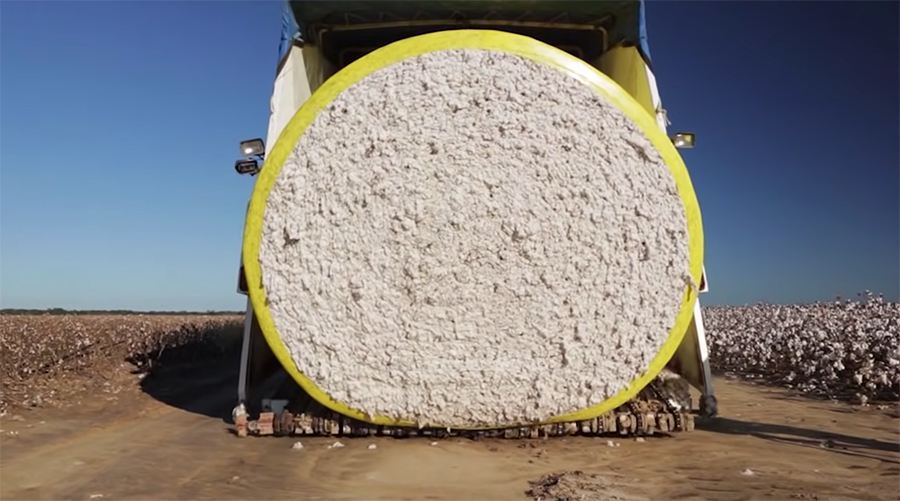 giant bale of cotton