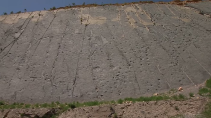 A Cliff Wall Full Of Dinosaur Footprints In Spain The