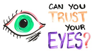 Can you trust your eyes? –AsapScience