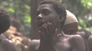 The polyphonic singing traditions of the Baka Forest People