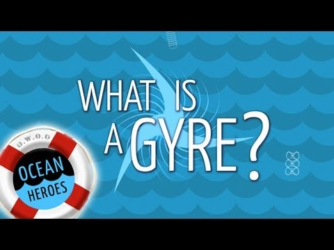 What is a Gyre?