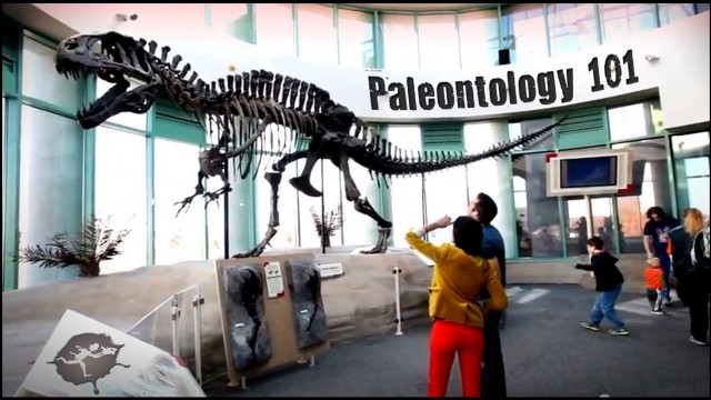 Paleontology 101 with Dr. Lindsay Zanno