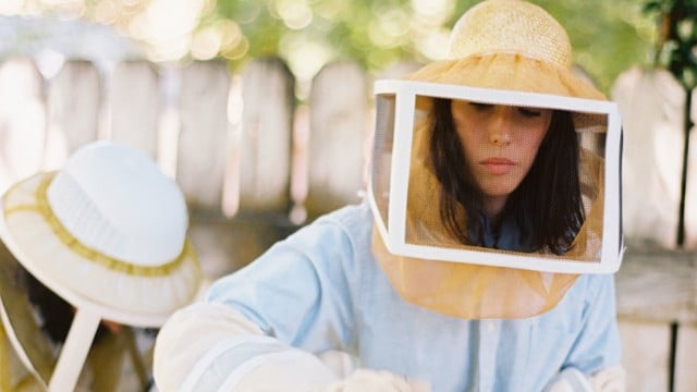 Harvesting honey – Kinfolk Magazine