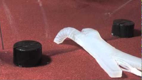Harvard's Soft Robot Walking and Crawling