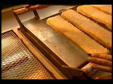 Honey – How It's Made