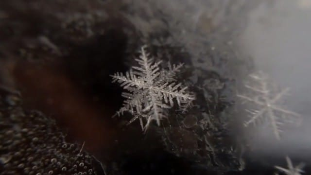 The Birth of a Snowflake (A snowflake melts in reverse)