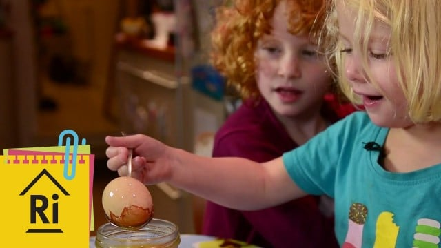 How to make bouncing eggs – ExpeRimental