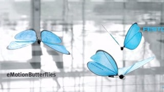 eMotionButterflies & BionicANTs: Festo's bionic insect collectives