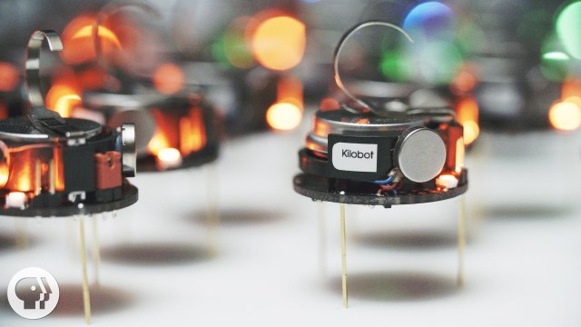 Can A Thousand Tiny Swarming Robots Outsmart Nature?