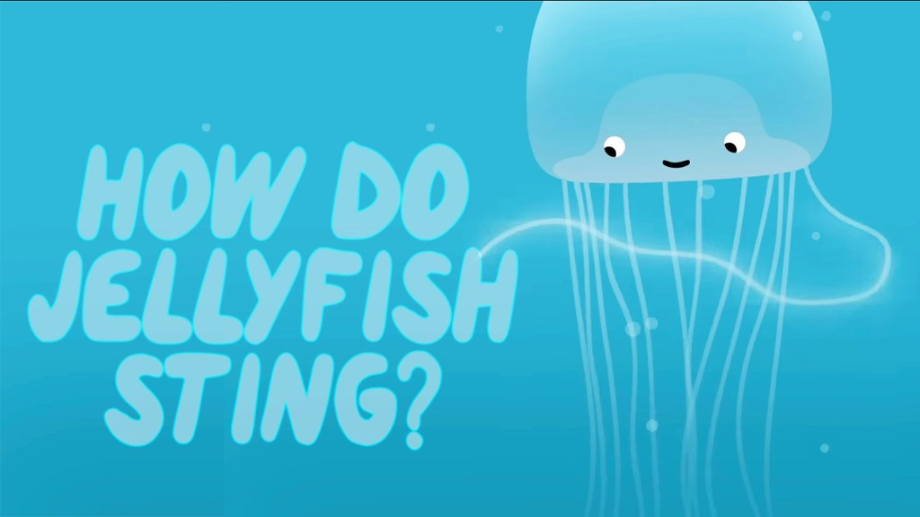 how do jellyfish sting the kid should see this