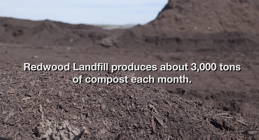 3,000 tons of compost every year (2016)