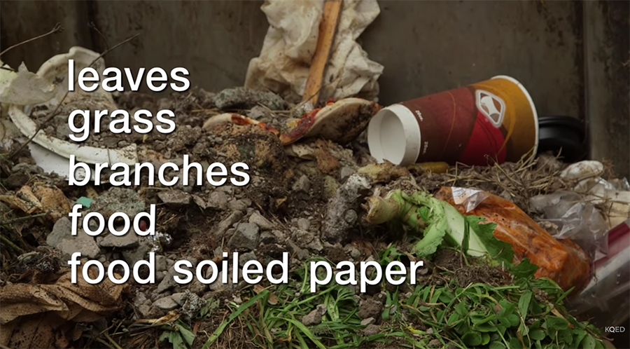 what goes into the compost?