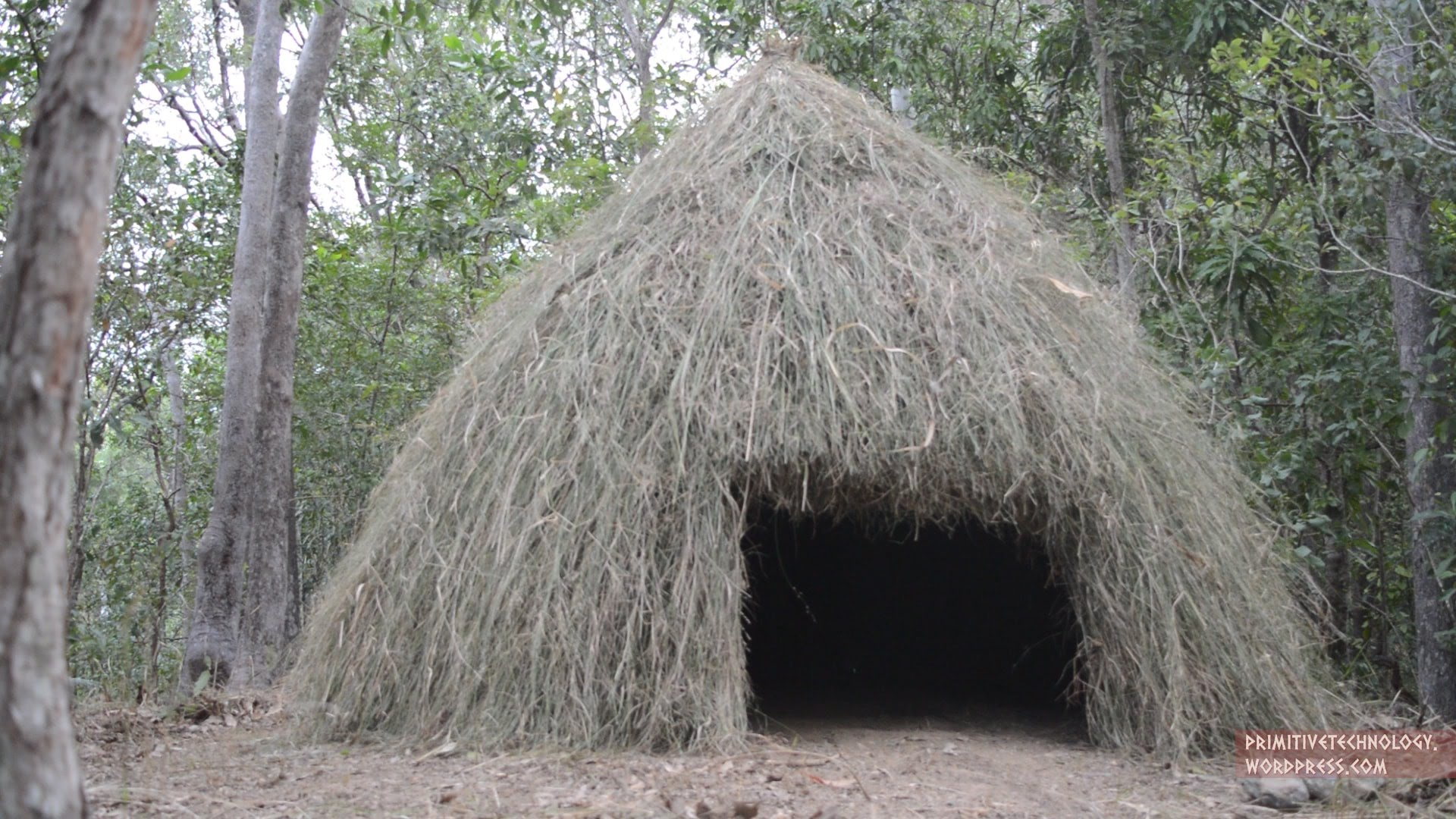 How To Build A Grass Hut Primitive Technology The Kid