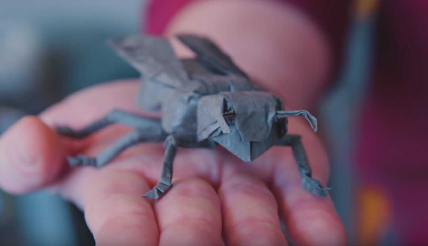 robert lang - origami insect