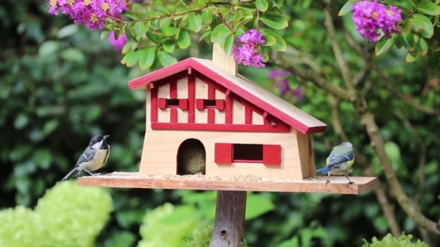Building a traditional Basque style bird house – La Fabrique DIY
