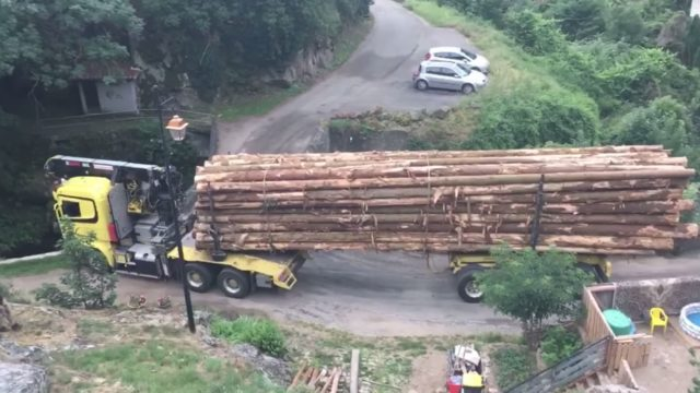 Can this super long logging truck turn and cross this tiny bridge?