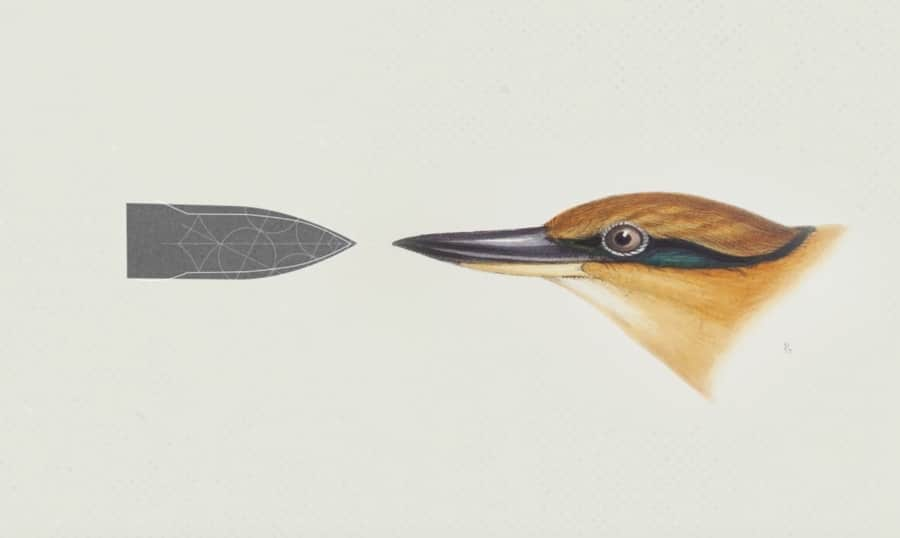 The nose of the Japanese Shinkansen Train, inspired by the beak of the KingFisher.