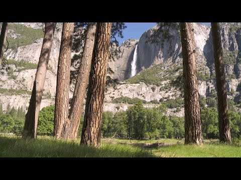 Noticing the soundscapes of Yosemite National Park