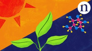 Learning from leaves: Going green with artificial photosynthesis