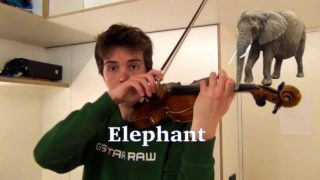 Nine animal sounds and Super Mario World sound effects created with a violin