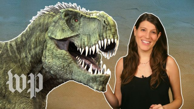 Dinosaurs probably didn't roar. What did they sound like?