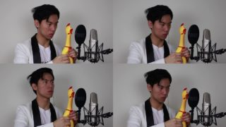 Pachelbel's Chicken & other chicken instrument performances