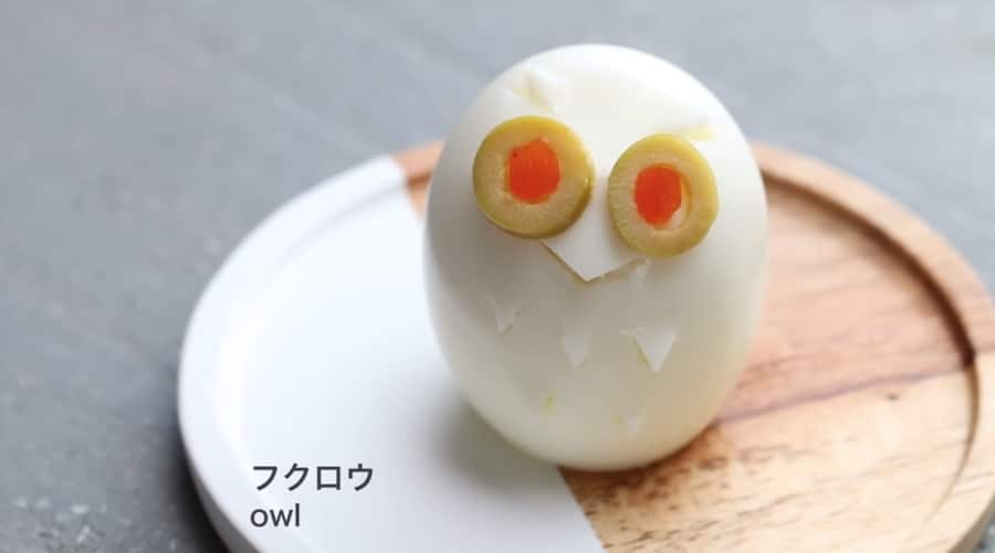 cute egg owl