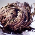 curled up rose of jericho