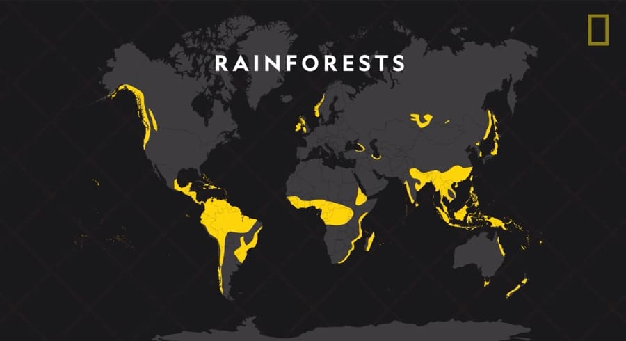 rainforest locations