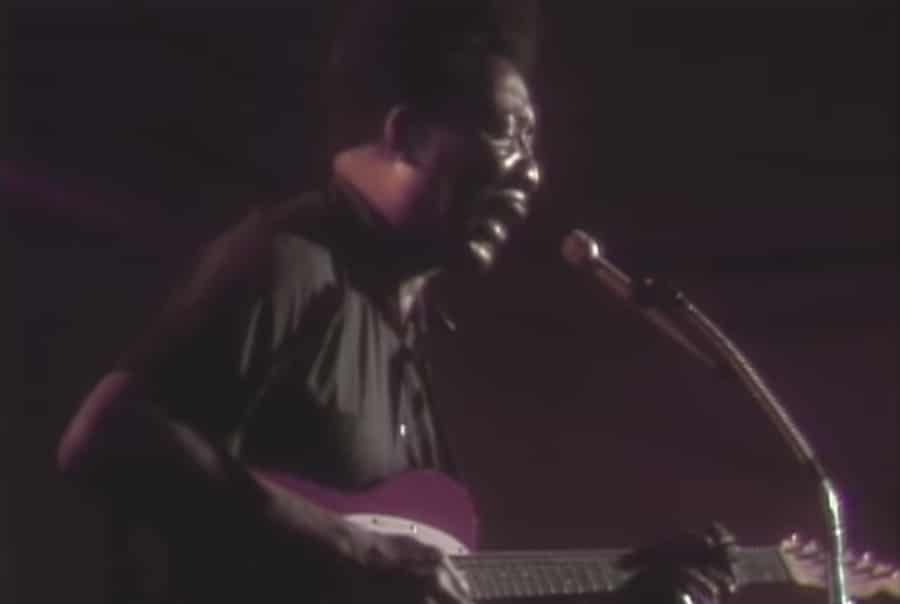 muddy waters sings honey bee