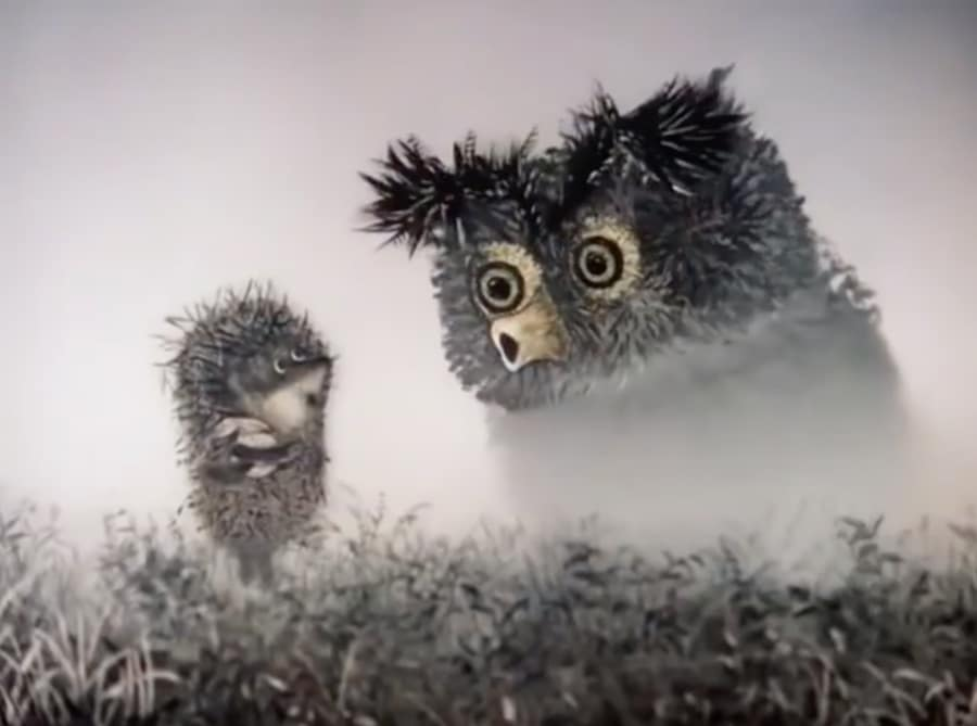 owl and hedgehog