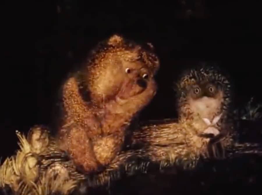 bear and hedgehog